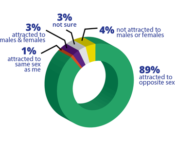 A pie chart showing the current sexual identity of young people